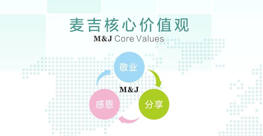 皮革化工公司廣州麥吉的核心價值觀